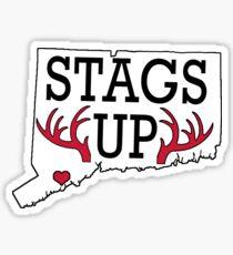 Fairfield University Stags Up Connecticut Sticker