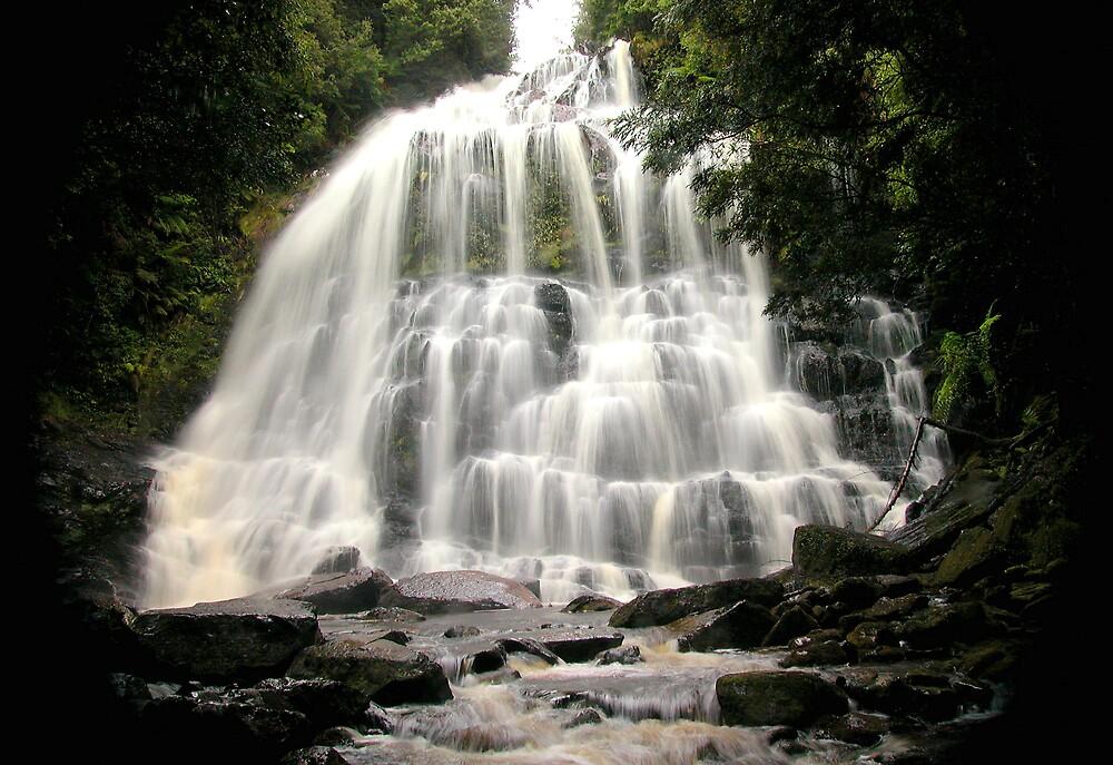 Nelson Falls, Franklin-Gordon Wild Rivers National Park, Tasmania by John Barratt