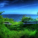 A Blue View by Christiaan