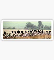 They Wait~ Vultures, Gettysburg Battlefield Sticker