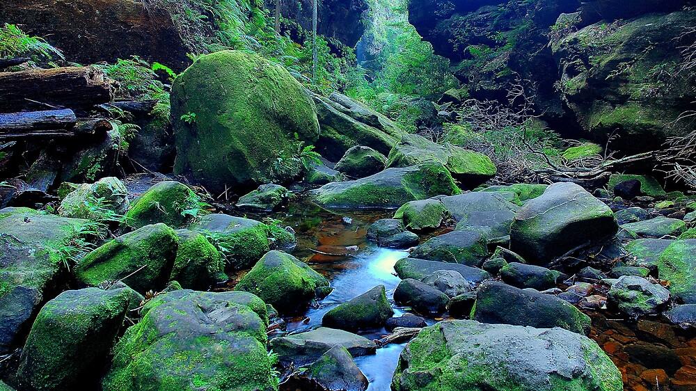 Secret gorge by matthew maguire