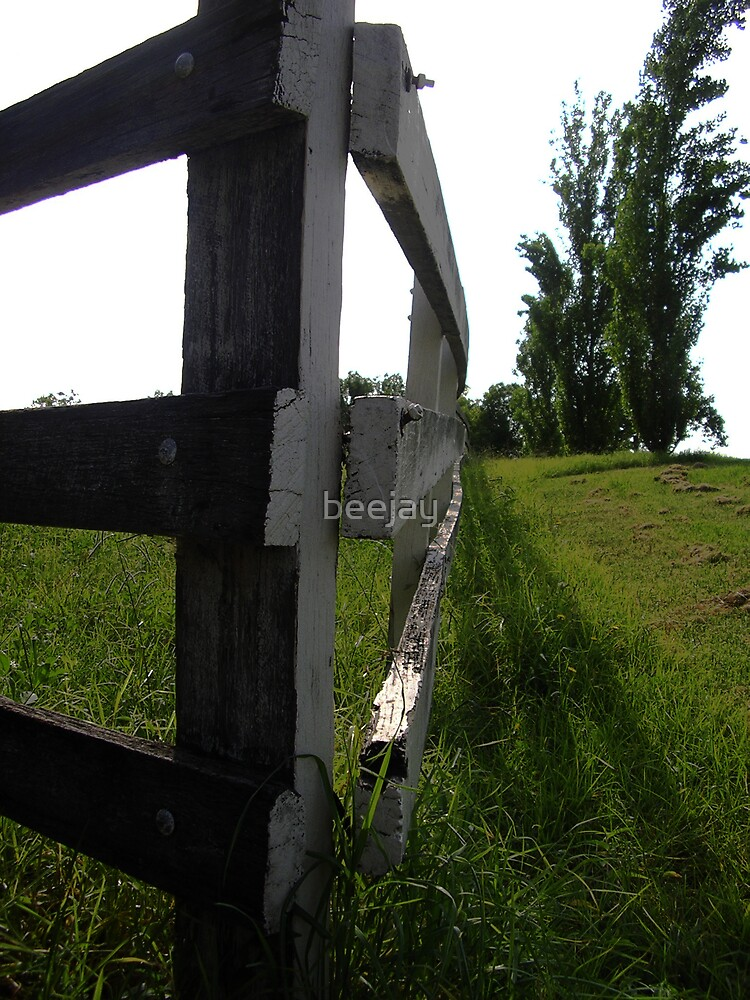 Fence by beejay