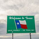 Welcome to Texas Sign by Sue Smith