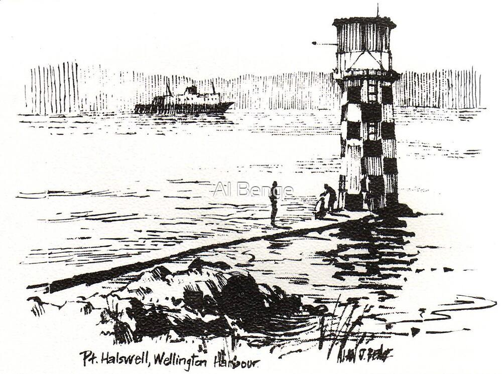Pt Halswell, Wellington Harbour, New Zealand.  by Al Benge