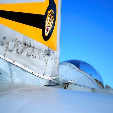 F/A-18 Hornet by SteveKilburn