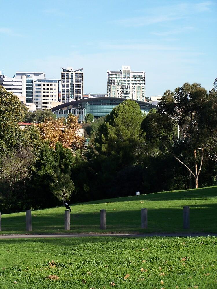 Adelaide by Princessbren2006