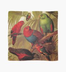 Parrots in the Jungle Scarf