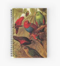 Parrots in the Jungle Spiral Notebook