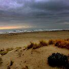 The sea in winter by annalisa bianchetti