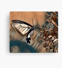 Butterfly Collecting Pollen Canvas Print
