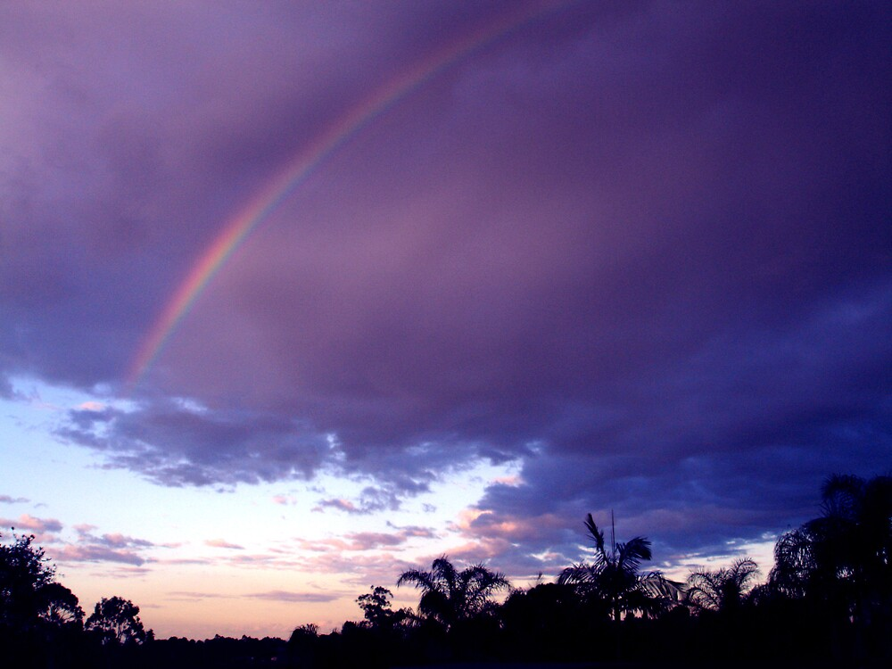 rainbow by Hawk