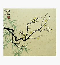 Yellow Plum Blossom With Green Bamboo Photographic Print