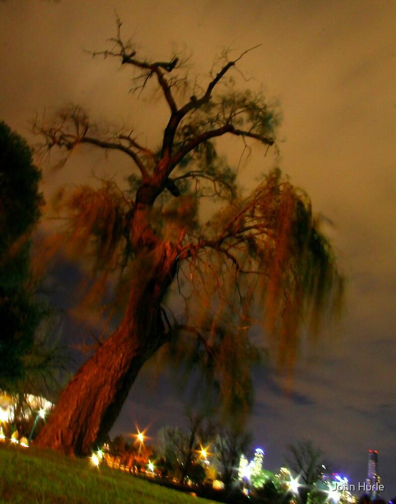 Albert Park 2 by John Hurle