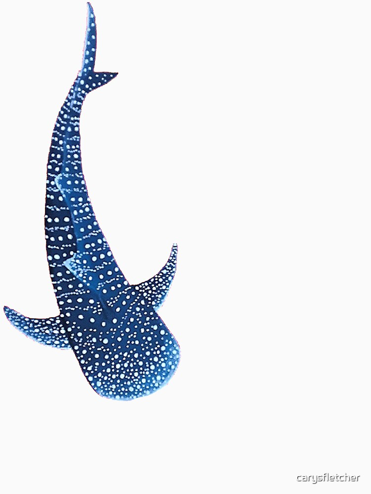 Tiburón ballena de carysfletcher