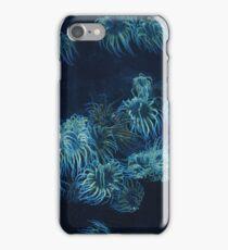 Sea Anemones  iPhone Case/Skin