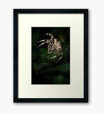 Furry hunter Framed Print