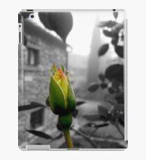 yellow rose iPad Case/Skin