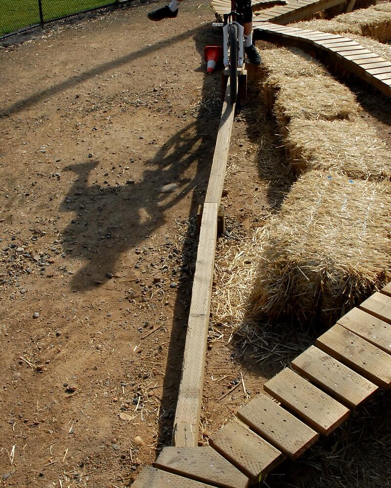 shadow biker by Hawk