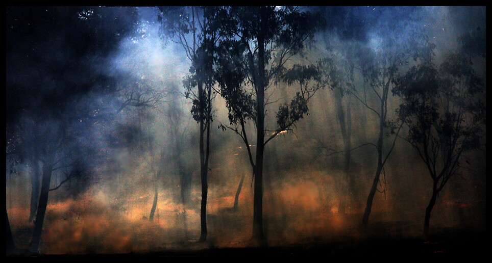 Dying Embers by Bryant Evans