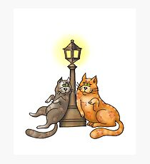 Cute Cat Lovers Rendezvous Photographic Print