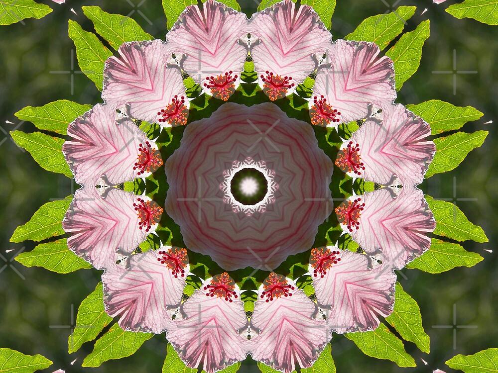 Kaleidescope - Floral Arrangement by Sandra Chung
