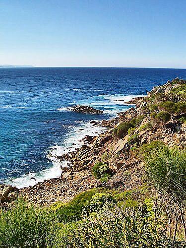 Kianinni Bay by Vanessa Pike-Russell
