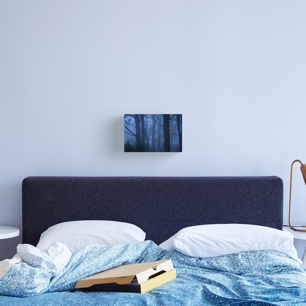 Blue mist Canvas Print