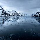 Glacier Bay by Robyn Lakeman