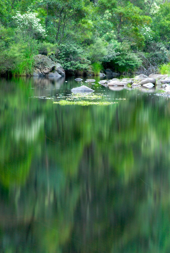 Green Reflections by John Barratt