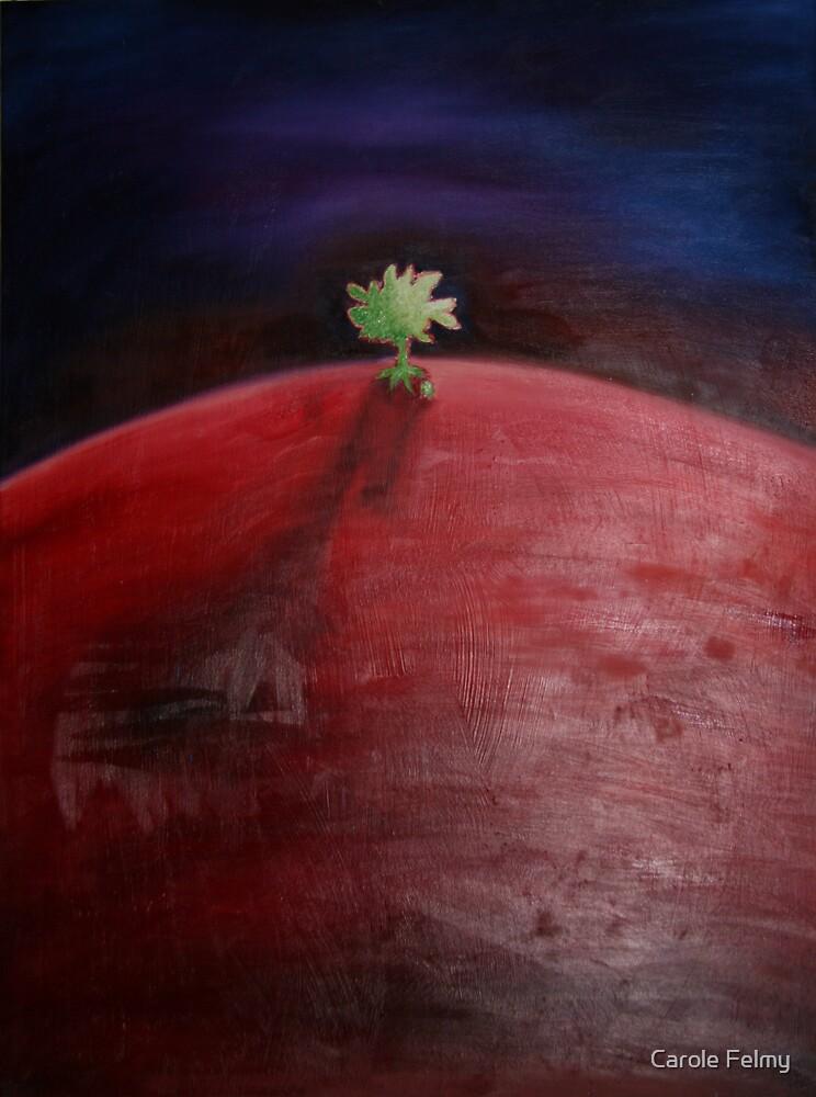 The hill of sorrow by Carole Felmy