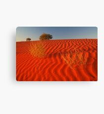 Sundown Madigan Line Simpson Desert Canvas Print
