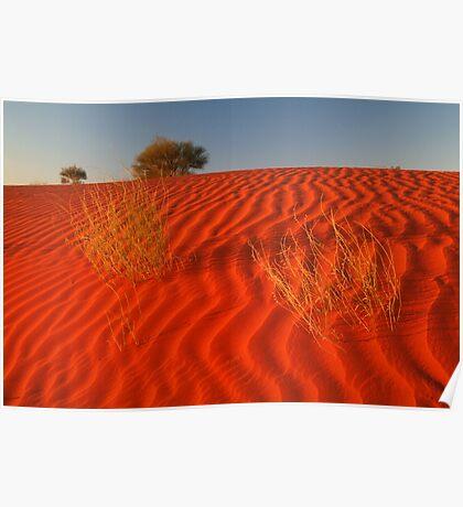 Sundown Madigan Line Simpson Desert Poster
