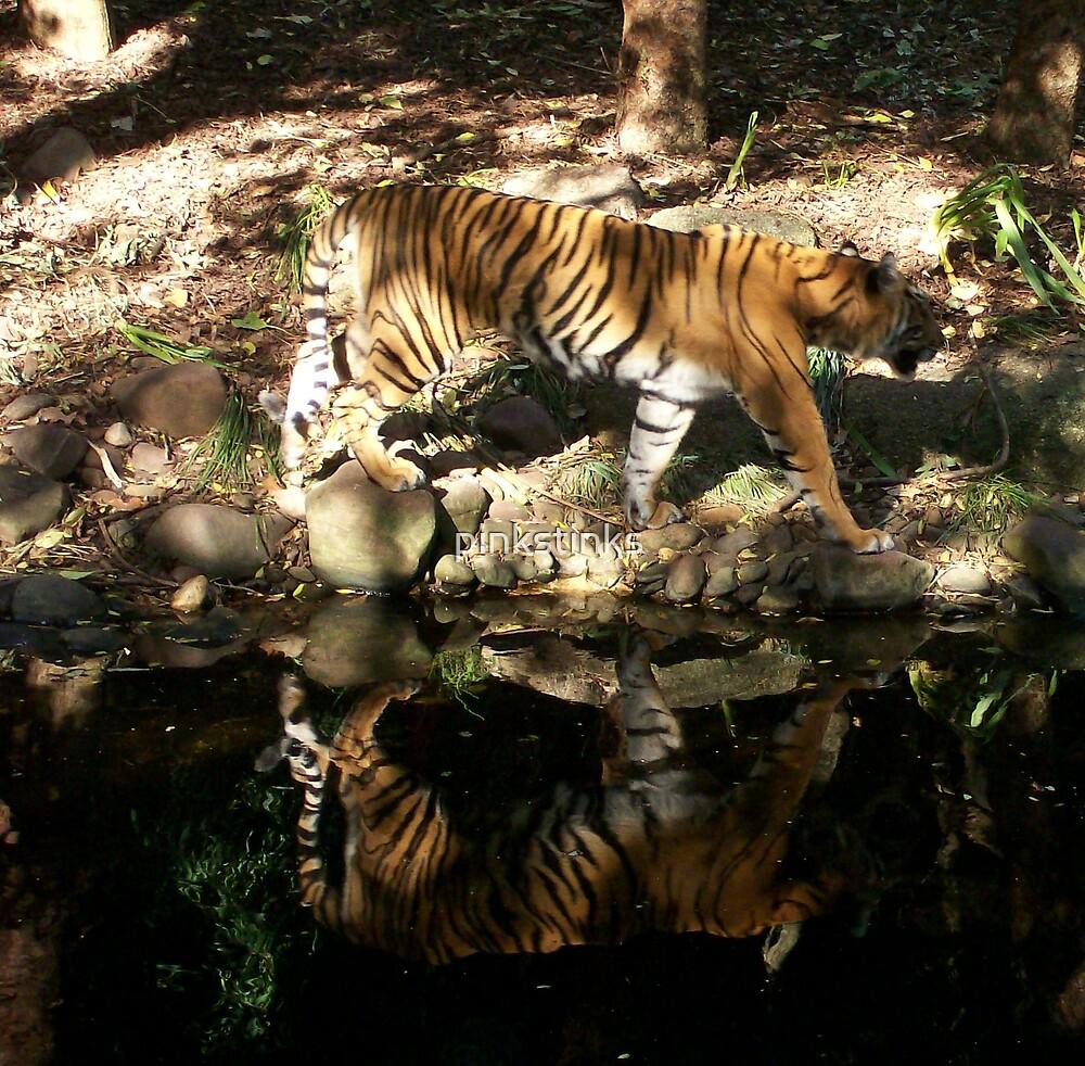 Tiger by pinkstinks