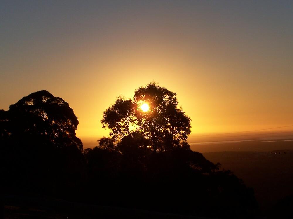 Sunset  by Princessbren2006