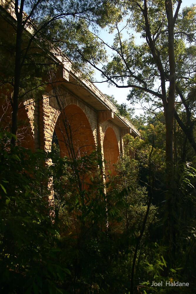 Mountain Viaduct by Joel  Haldane