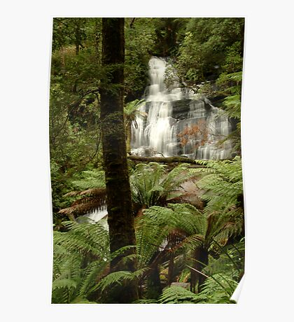 Triplet Falls Otway Ranges Poster