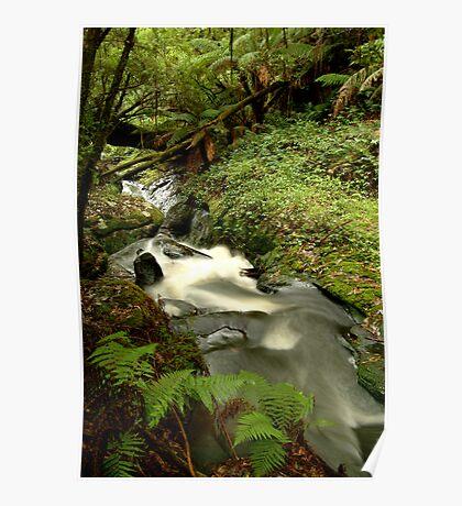 Rushing Waters,Triplet Falls,Otway's Poster