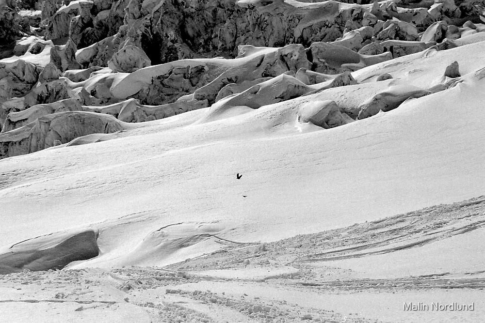 alone on the glacier by Malin Nordlund