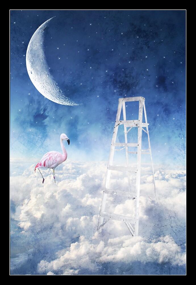 Flamingo Nights by Imogene Munday