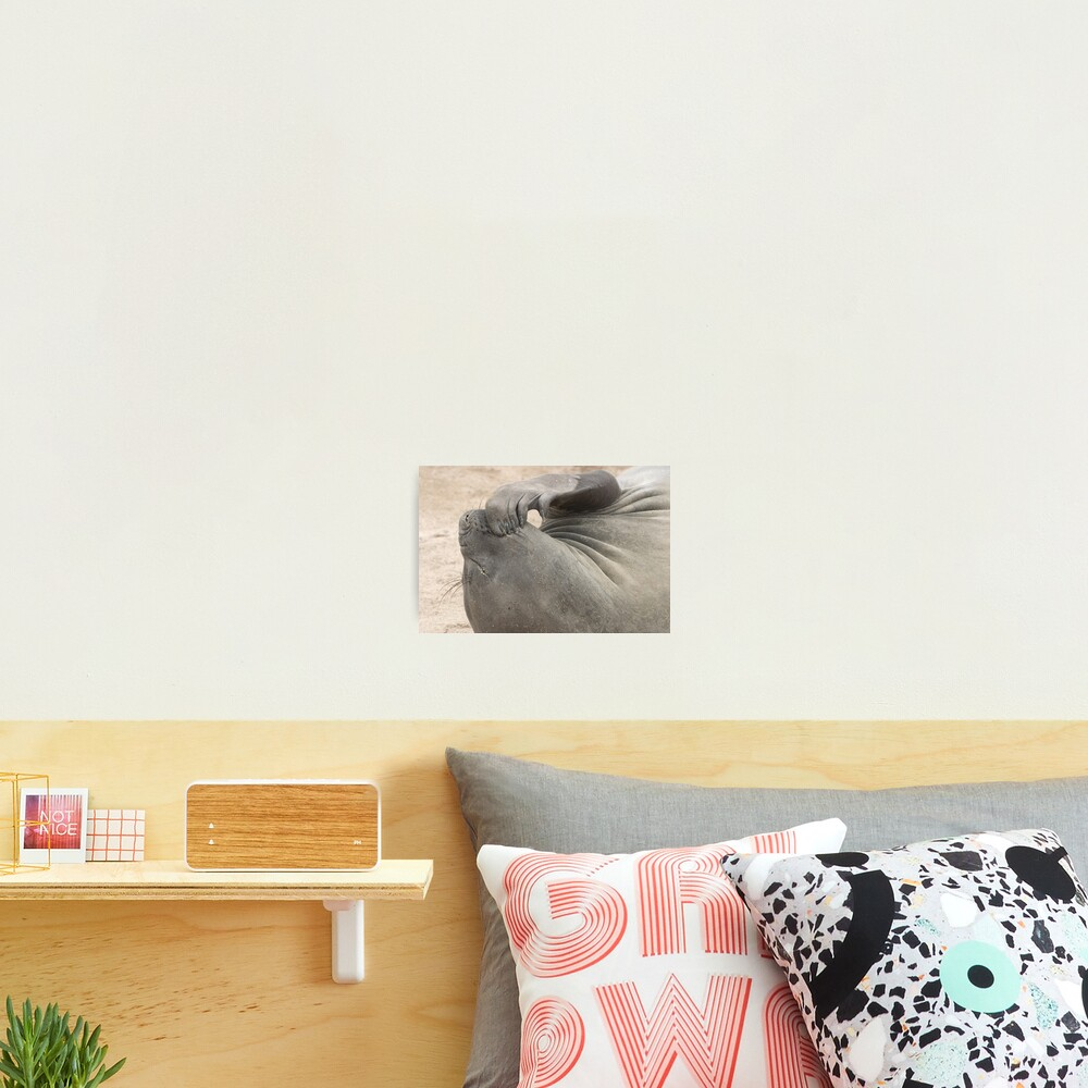 Deep Thought Photographic Print