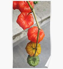 Floral Chinese Lanterns Poster