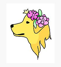 flower doggo Photographic Print