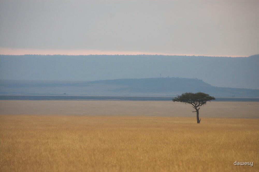 Masai Mara by dawesy