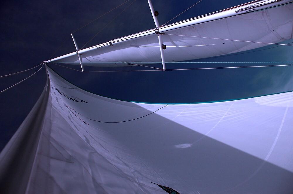 Big Sail by Leigh  Parkin