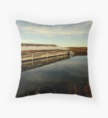 The Lagoon Throw Pillow