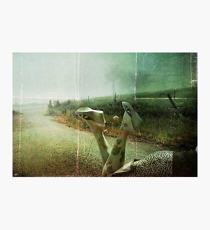 Landscape #1 Photographic Print