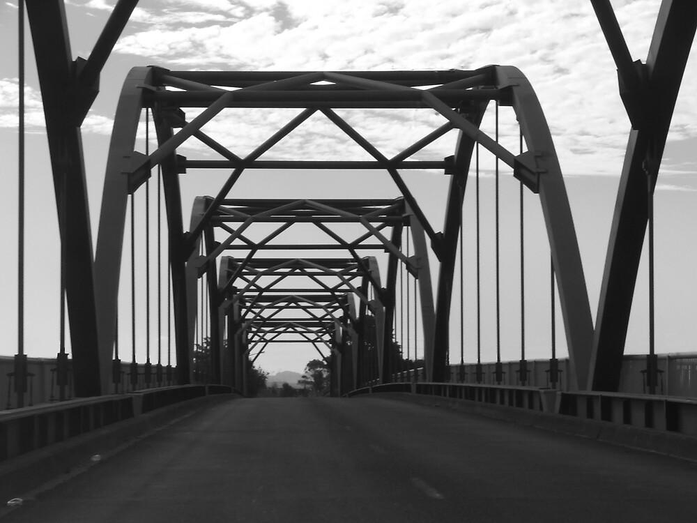 Tainui bridge by simonsinclair