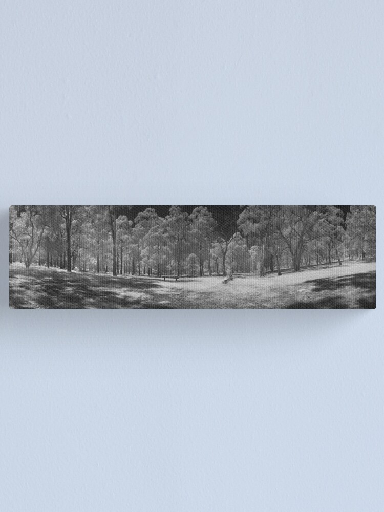 Alternate view of Wattle Park in infrared Canvas Print