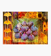 Figs Photographic Print