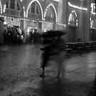Rain by beejay